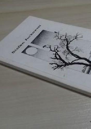 Okładka książki Poszerzanie przestrzeni