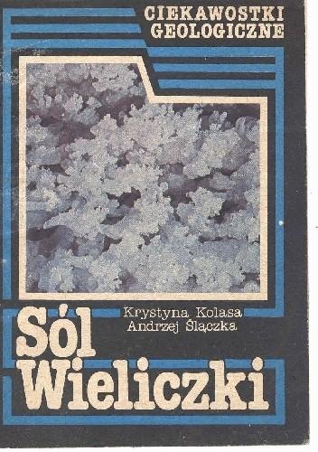 Okładka książki Sól Wieliczki