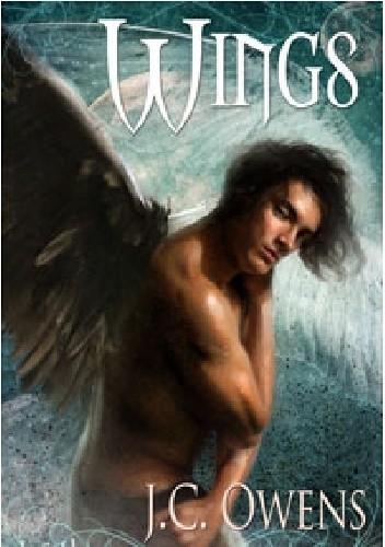 Okładka książki Wings