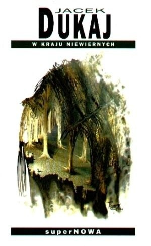 Okładka książki W kraju niewiernych