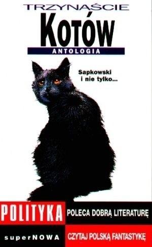 Okładka książki Trzynaście kotów