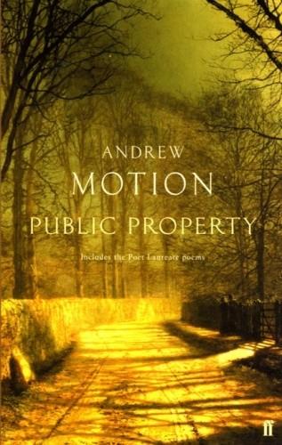 Okładka książki Public Property