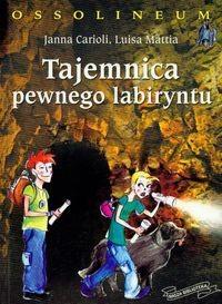 Okładka książki Tajemnica pewnego labiryntu