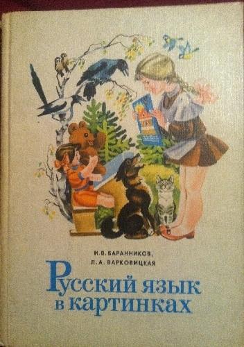 Okładka książki Русский язык в картинках