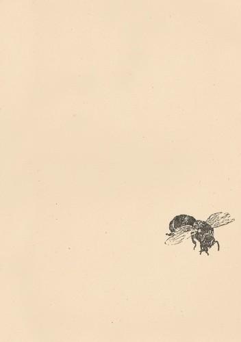 Okładka książki Farosz i jego pasja. Opowieść o Janie Dierżonie