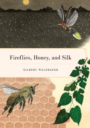 Okładka książki Fireflies, Honey, and Silk