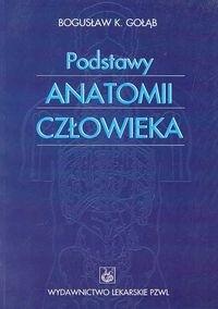 Okładka książki Podstawy anatomii człowieka - Gołąb Bogusław K.