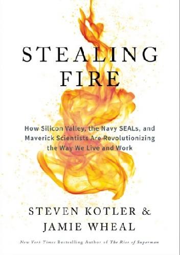 Okładka książki Stealing fire