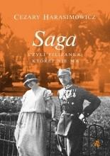 Saga, czyli filiżanka, której nie ma - Jacek Skowroński