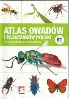 Atlas owadów i pajęczaków Polski. Przewodnik obserwatora