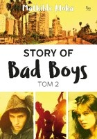 Story of Bad Boys t. 2