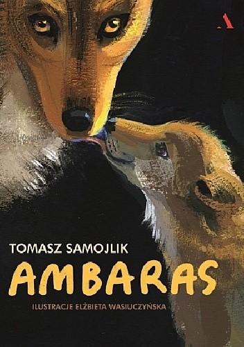 Okładka książki Ambaras