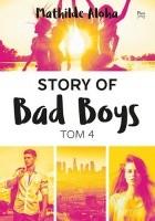 Story of Bad Boys. Tom 4