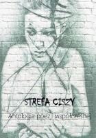 Strefa ciszy. Antologia polskiej poezji współczesnej