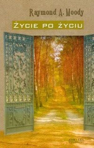Okładka książki Życie po życiu