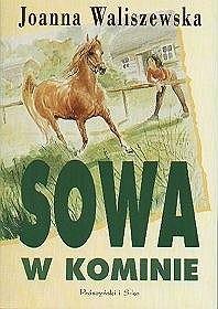 Okładka książki Sowa w kominie