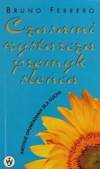 Okładka książki Czasami wystarcza promyk słońca
