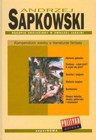 Okładka książki Rękopis znaleziony w smoczej jaskini. Kompendium wiedzy o literaturze fantasy