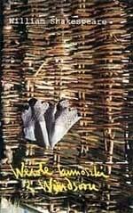 Okładka książki Wesołe kumoszki z Windsoru