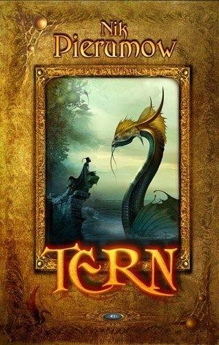 Okładka książki Tern