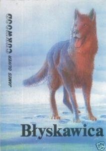 Okładka książki Błyskawica