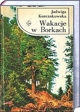 Okładka książki Wakacje w Borkach