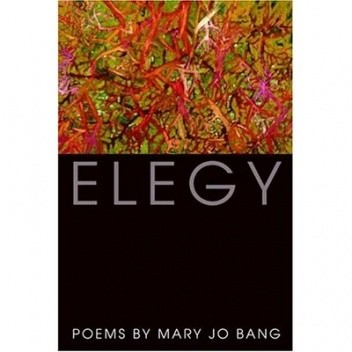 Okładka książki Elegy