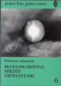 Okładka książki Błogosławiona między niewiastami. Maryja w feministycznej teologii Cathariny Halkes.