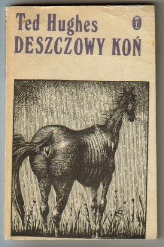 Okładka książki Deszczowy koń