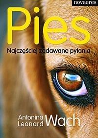 Okładka książki Pies. Najczęściej zadawane pytania