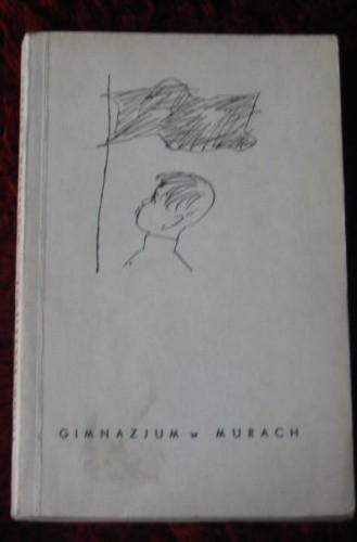 Okładka książki Gimnazjum w murach