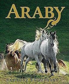 Okładka książki Araby. Dzieci Wiatru