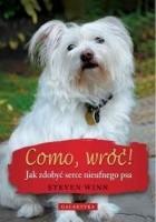 Como, wróć! Jak zdobyć serce nieufnego psa