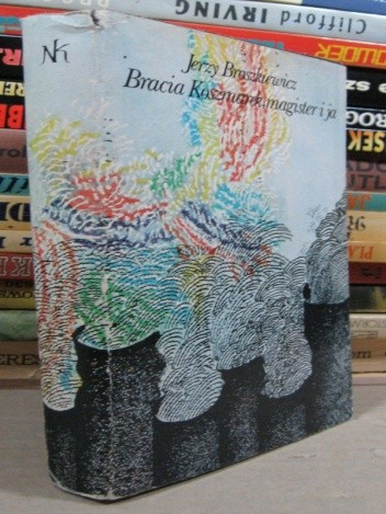 Okładka książki Bracia Koszmarek, magister i ja