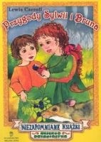 Okładka książki Przygody Sylwii i Bruna