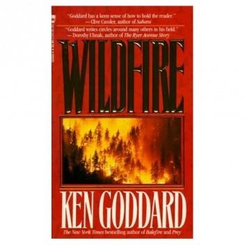 Okładka książki Wildfire