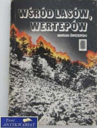 Okładka książki Wśród lasów, wertepów