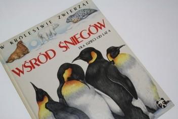 Okładka książki Wśród śniegów