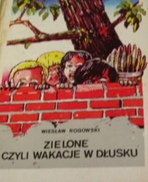 Okładka książki Zielone czyli Wakacje w Dłusku