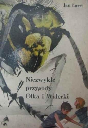 Okładka książki Niezwykłe przygody Olka i Walerki