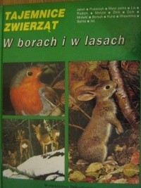 Okładka książki W borach i w lasach