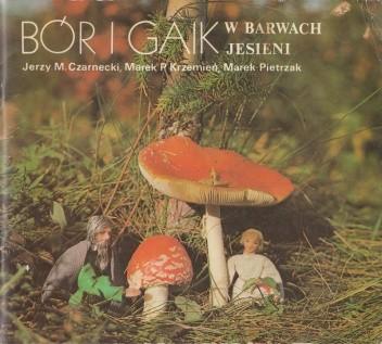 Okładka książki Bór i Gaik w barwach jesieni