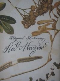 Okładka książki Ród Abaczów