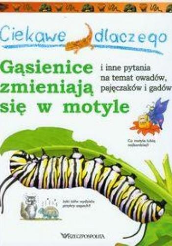 Okładka książki Ciekawe dlaczego gąsienice zmieniają się w motyle i inne pytania na temat owadów, pajęczaków i gadów