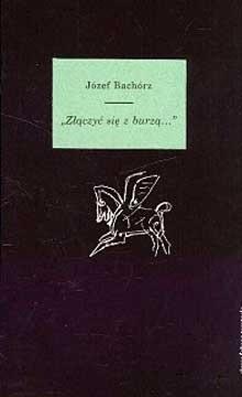Okładka książki Złączyć się z burzą… Studia i szkice o romantycznych wyobrażeniach morza i egzotyki