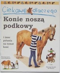 Okładka książki Ciekawe dlaczego konie noszą podkowy