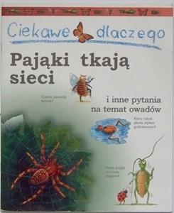 Okładka książki Ciekawe dlaczego pająki tkają sieci