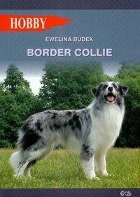 Okładka książki Border Collie