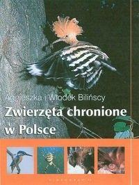Okładka książki Zwierzęta chronione w Polsce