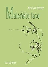 Okładka książki Maleńkie lato